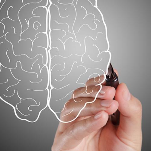 مشروع إعداد مدربات في الدعم النفسي (ذكاء عاطفي)